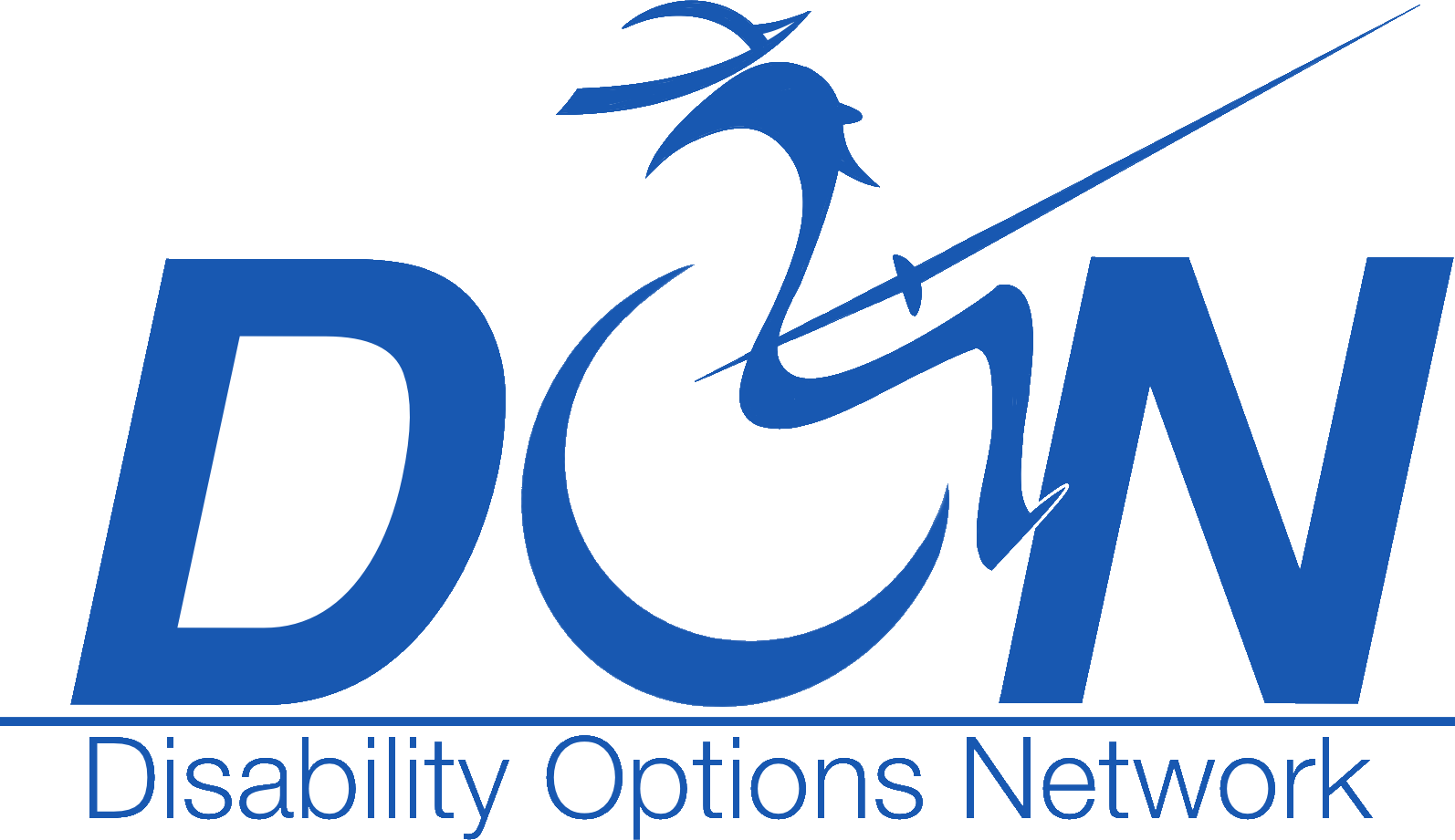 Go to Disability Options Network Home Page